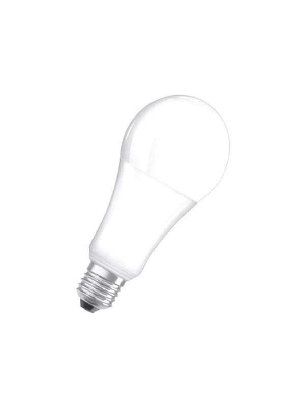 Seijsener-LEDlamp-21w-E27-0021313804